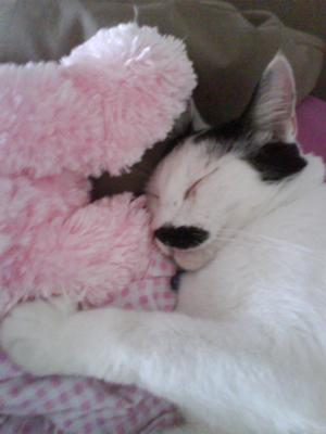 Sleeping on my bed with my teddy