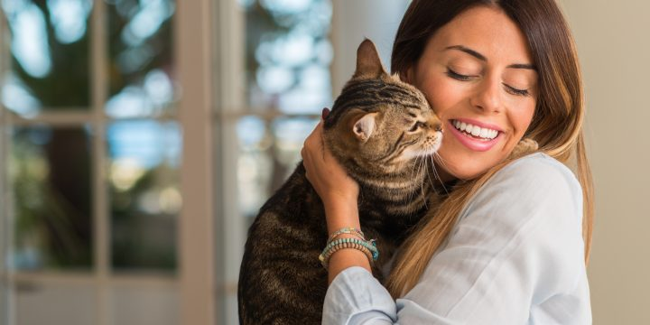 5 Smart Tips to Save on the Cost of Owning a Cat